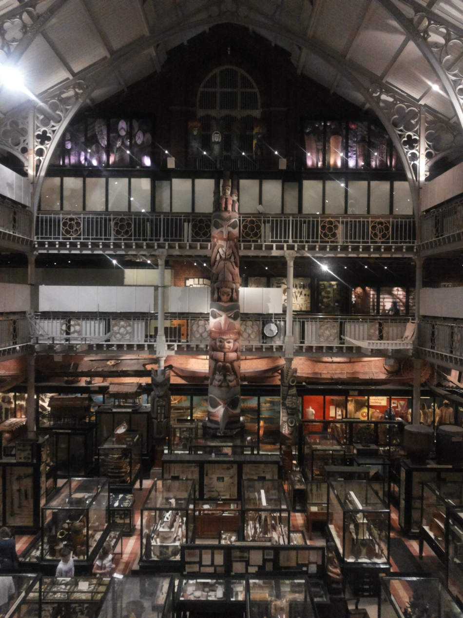 pitt-rivers-interno